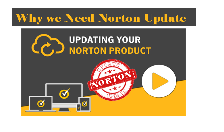 norton update